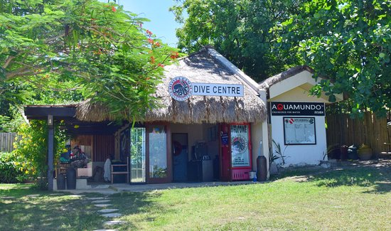 Dofleini Dive Center
