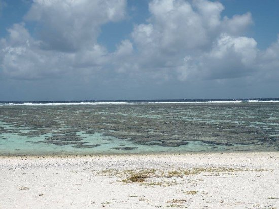 Lady Elliot Island, Australia: photo9.jpg