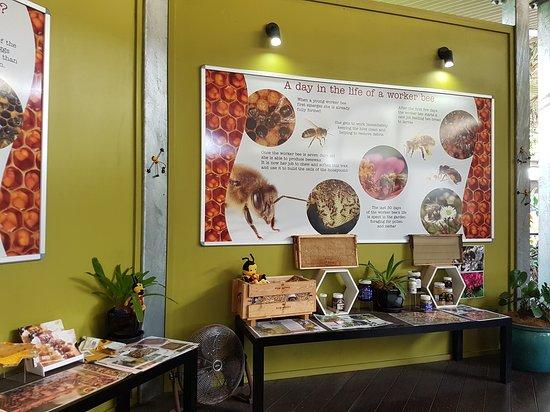 Yandina, Australia: The Ginger Factory