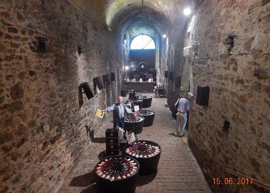 Brissac-Quince, França: cellar