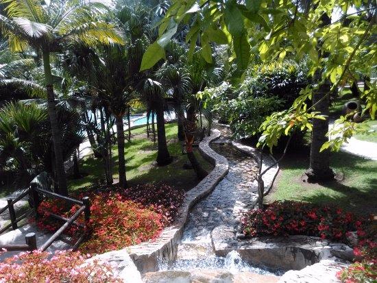 20170613 123922 photo de jardin botanico for Jardin botanico torremolinos