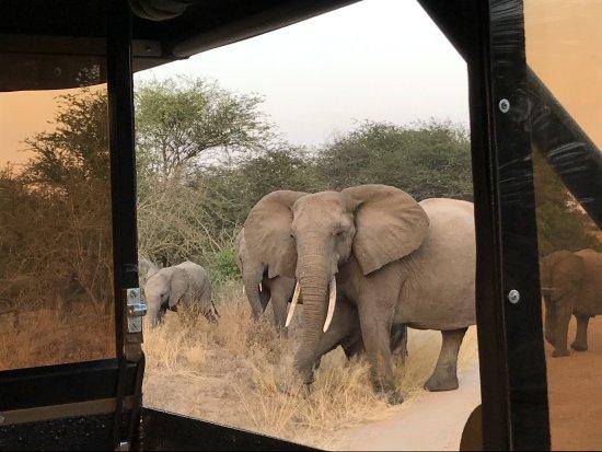 Hazyview, Sudáfrica: photo1.jpg