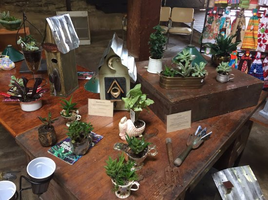 Elberton, GA: Homemade succulent plants in unique containers.
