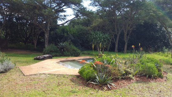 Louis Trichardt, Sudáfrica: Pool at Madala's Cottage looking west.