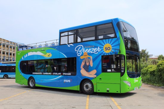 ‪Purbeck Breezer Open Top Tour Bus‬