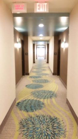 Murfreesboro, TN: hall with new carpet