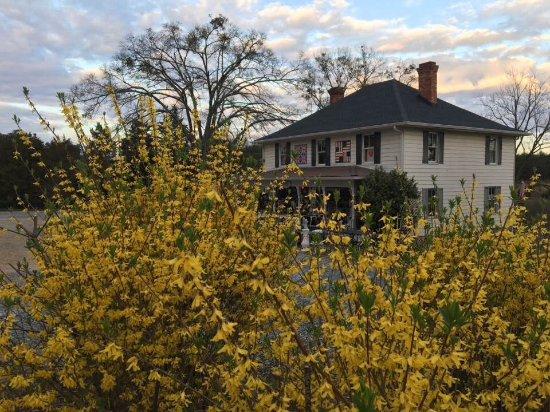 Landrum, Karolina Południowa: Early spring, 2017