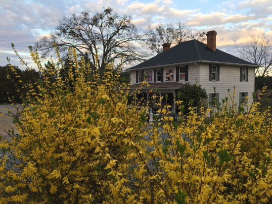 Landrum, SC: Early spring, 2017