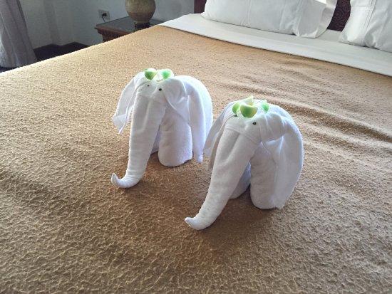 Ya Nui Resort: Слоники которые нас встречали