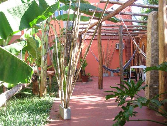 Hostel Sweet Hostel: Il giardino interno