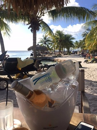 Obraz Lions Dive & Beach Resort Curacao