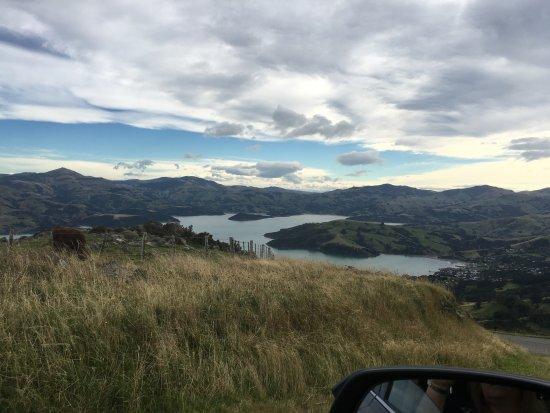 Акароа, Новая Зеландия: way up high