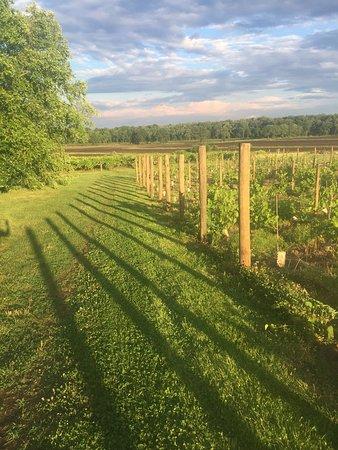 Columbus, นิวเจอร์ซีย์: Iron Plow Vineyards