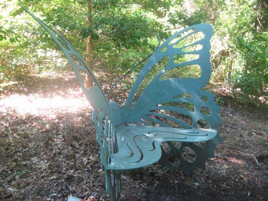 Creedmoor, NC: CC Gallery