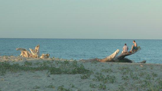 Foto de Camping Marina d'Aleria