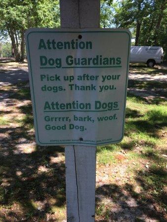 Waretown Lake & Recreation Area: Pick up after dog sign