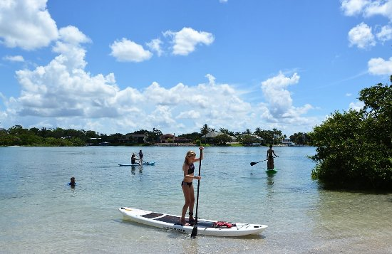 Jetty Rentals: We have the most easy to ride, non perfermance paddleboards on the market. We dare you to fall o