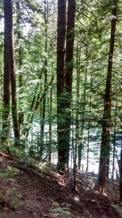 Pemberton, Canada : Nairn Falls Provincial Park