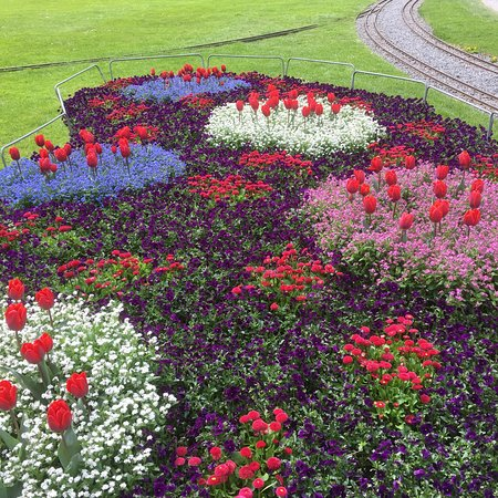 Schloss Schadau: Blommor i slottsparken