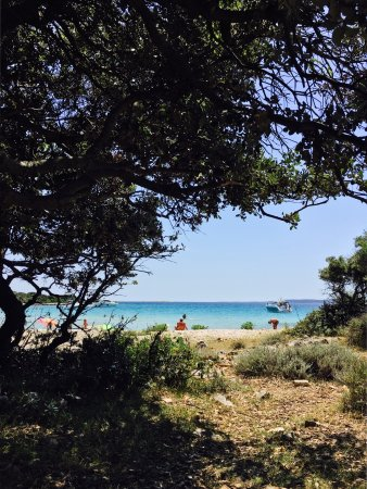 Lošinj Island, Croacia: Meli Plat