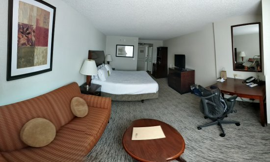 Hilton Garden Inn Toronto Airport: Room with king-size bed with pullout sofa