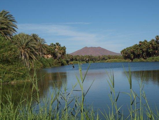 San Ignacio, Mexico: View on the creek
