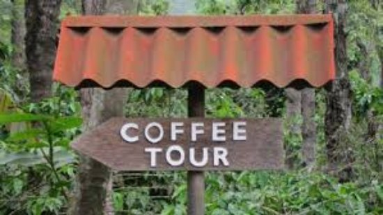 Playa Negra, كوستاريكا: tour pic