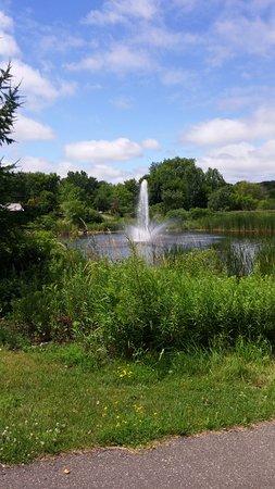 Plymouth, MN: Beautiful gardens!