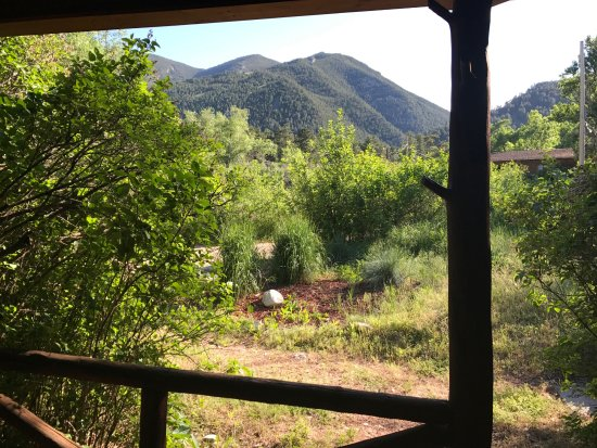 Wolf, Вайоминг: View from the porch of our cabin