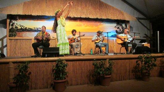 舉辦夏威夷滑音吉他表演