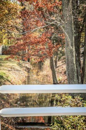 Basking Ridge, NJ: View from a bridge over the stream that runs through the property