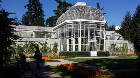 Albert Kahn Musee et Jardins: jardin albert kahn