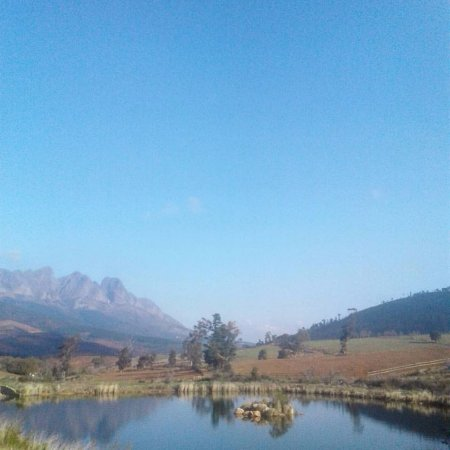Wellington, Sudafrica: This was the dam, it was really lovely, the streams running all around the property were restful