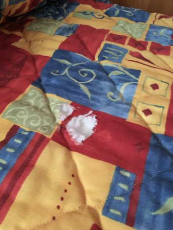Lake Blackshear Resort and Golf Club: Bedspread had holes.