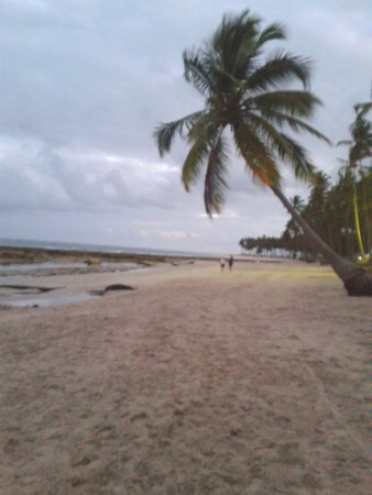 Carneiros Beach : Tem épocas do ano que fica assim paradisíaco. Outras épocas fica tudo lotado de gente.