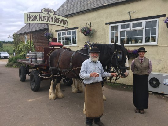Hook Norton, UK: The shire horse drawn delivery the The Gate Hangs High Pub