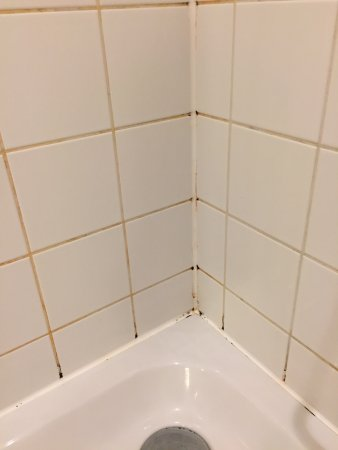 Austria Trend Hotel Salzburg Mitte: Shower recess has not been properly cleaned for a long time!