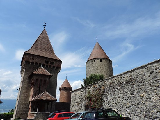 Estavayer-le-Lac, Schweiz: A high stone wall covered with neglected rose bushes is beside the old castle.