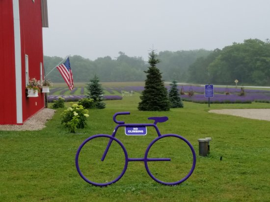 Washington Island, Висконсин: Purple Bike
