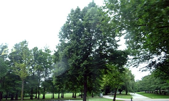 Vroesenpark: the park