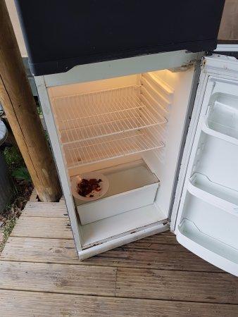 Biddenden, UK: Uncleaned fridge.