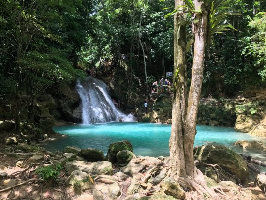 River Tubing Picture Of Chukka Caribbean Adventures Good Hope Estate By Horse Amp Carriage