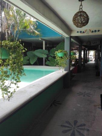 Chalupa Hostal: IMG_20170713_094551_large.jpg