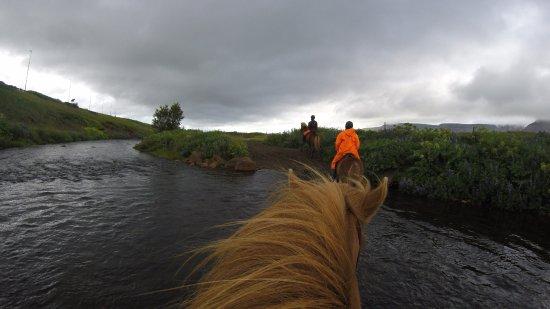 Mosfellsbaer, Island: Stream Crossing