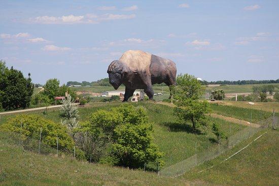 """เจมส์ทาวน์, นอร์ทดาโคตา: Largest """"buffalo"""""""