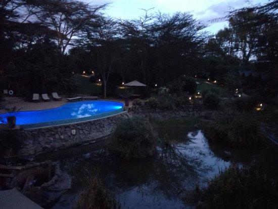 Wildebeest Eco Camp: IMG_20170625_185116_large.jpg
