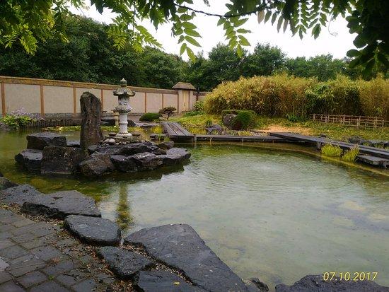 Jardin japonais ostende 2017 ce qu 39 il faut savoir pour votre visite tripadvisor for Ecran de jardin belgique