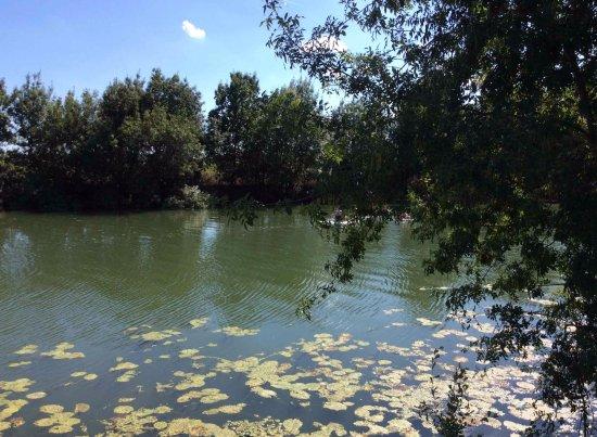 Le Thoureil, France : Along the River