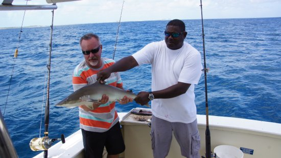 Yellowtail Charters Day Sails
