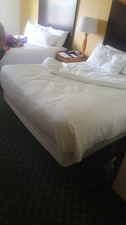 Fairfield Inn by Marriott Dayton Fairborn: Snapchat-589292075_large.jpg